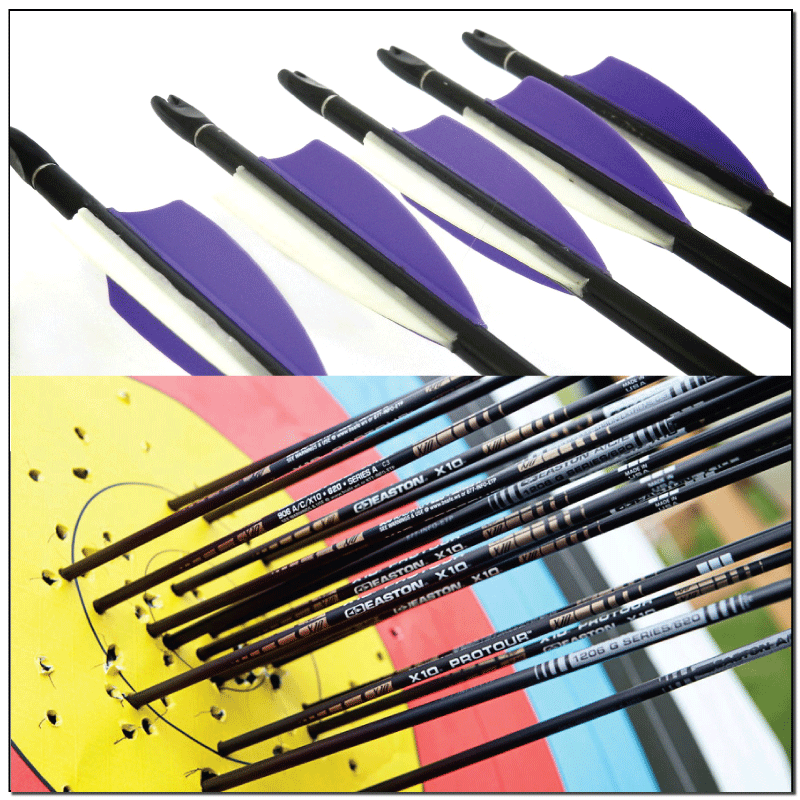 Carbon Arrows / Karbona Bultas